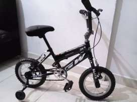 Bicicleta rin#12