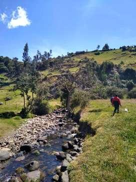 Vendo Finca municipio Siachoque de 7.100 Metros Cuadrados Negociable