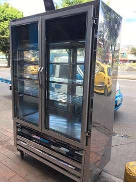 HERMOSA VERTICAL PANORAMICA TODA EN ACERO PEQUEÑA DE DOS PUERTAS