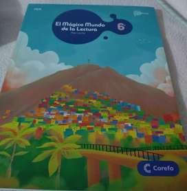 Libro nuevo plan lector editorial corefo Edición 2020