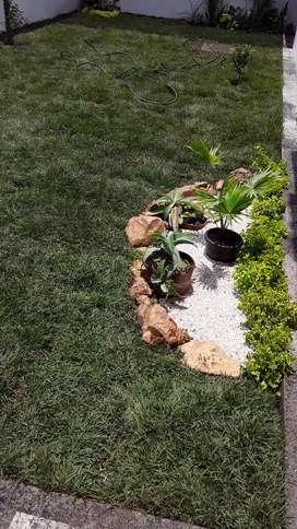 Realizamos Jardines Con Piedra Y Grama Natural