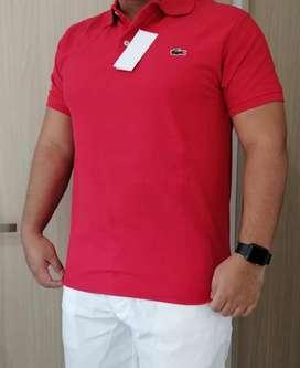 Camisas Lacoste y Polo para Hombre