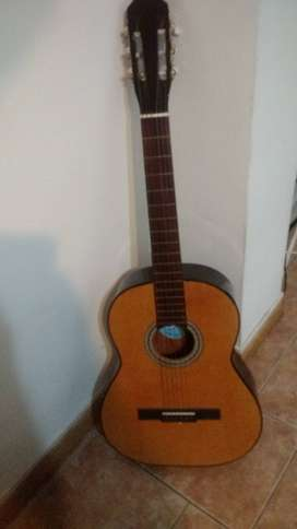 Liquido guitarra