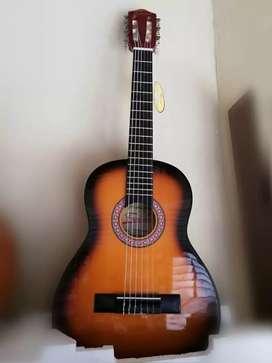 Guitarra FREEDOM Acústica pequeña