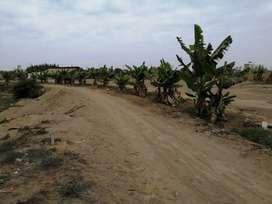 Terreno 15,000 m² a 200 m de Playa Pasamayito Km 104 Asia 450,000 Dolares