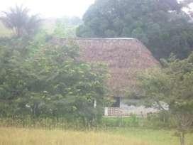 Se Vende Finca, 1.300 hectáreas