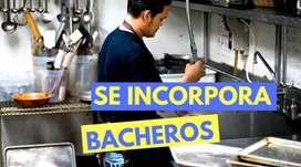 Bachero Zona San Martin