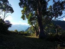 33.5 hectares terreno Masanamaca