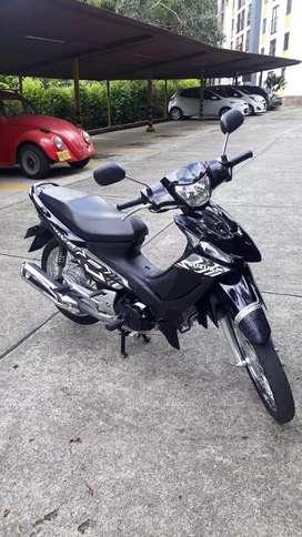 Suzuki como nueva