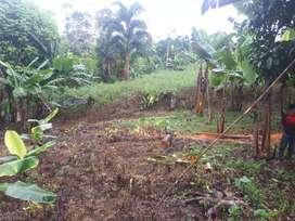 Venta de terreno (Guadalupe)