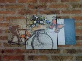 Cuadro bicicleta vintage 3 partes nuevo
