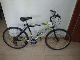 Bicicleta Tomaselli Scorpion