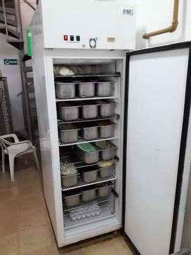 Congelador ISA 220 V