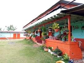 Se vende Finca  en el Municipio De Risaralda Caldas  Vereda La Esperanza