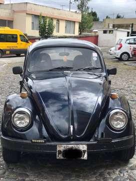 Escarabajo Aleman