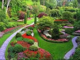 Me ofreco como diseñador de jardines jsrdinero y piscinero