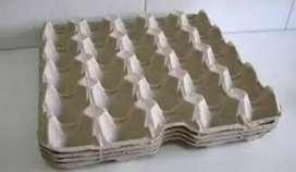Venta de Cubetas para 30 Huevos, usada y seleccionada