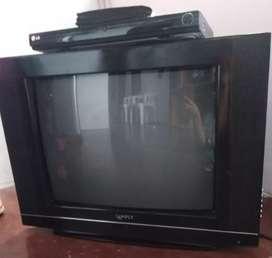 Se vende Televisor y Dividi