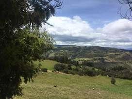 Venta de Lote vereda de Toquecha municipio de Tota