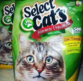Alimento precocido Select Cat