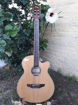 Guitarra Electroacústica Parquer