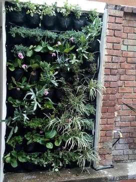 jardines verticales, horizontales y muros verdes