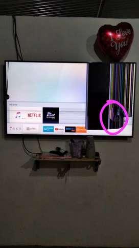 Ve do televisor Samsung 55 pulgadas