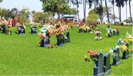 Camposanto Lomas de la Paz. - Nuevo chimbote