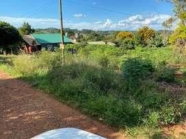 Vendo terreeno en San Vicente Misiones