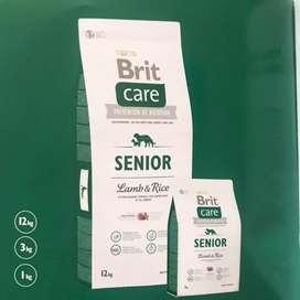 Brit care senior