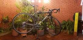 Bicicleta en Carbono Scott Addict 100