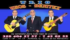 Serenatas con Trio
