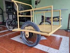 Triciclo reforzado