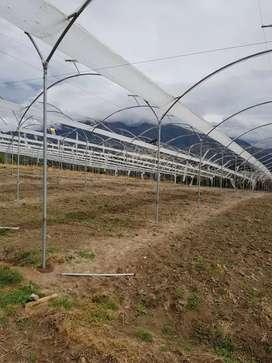 Construcciones de invernaderos