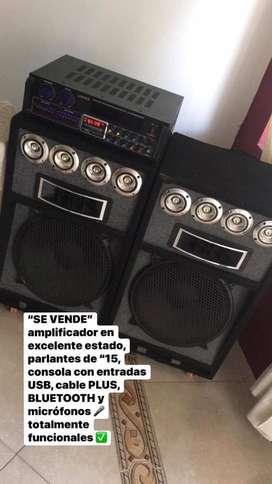 Amplificador y Parlantes.