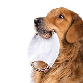 Frisbee Para Perros Con pito interno