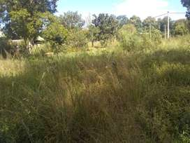 Se vende Quinta de 2 hectáreas y medias