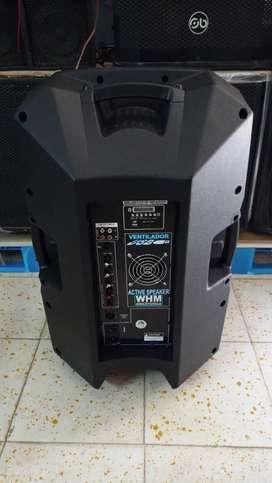 Bafle amplificado 15 pulgadas