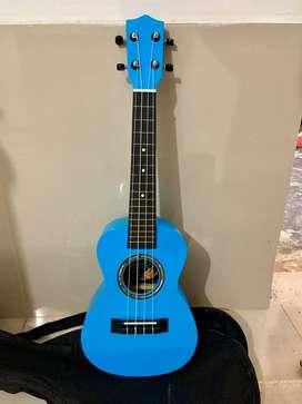 Guitarras y ukeleles nuevos con forro