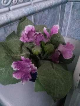 Flores Artificiales,materas