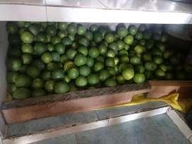 Se venden naranjas dulces
