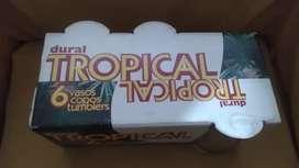 Vasos Tropical
