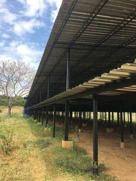 Granja avícola capacidad 210000 aves. Sin equipos. Estructura física. Excelente ubicación y precio