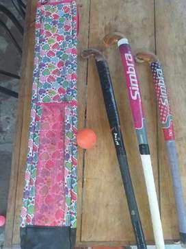 Vendo palos de jockey usado