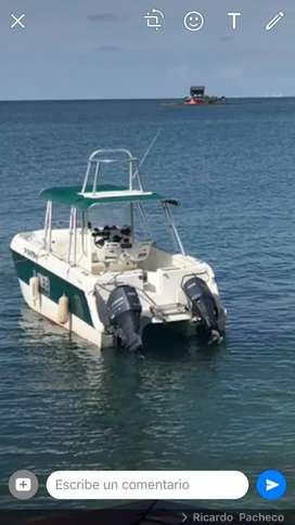 Bote catamaran
