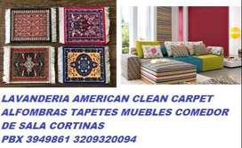 lavado de alfombras instaladas minima  3949861