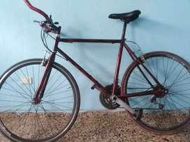 Bicicleta fixi