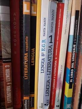 Clases particulares de Prácticas del lenguaje, Literatura, Latín e Inglés.