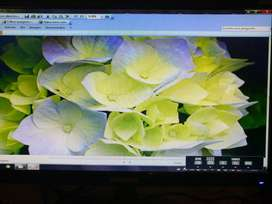 Monitor Samsung 19 LED con HDMI y VGA