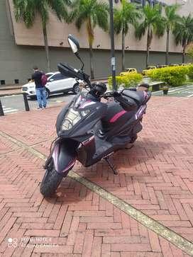 Moto agility Gangazo
